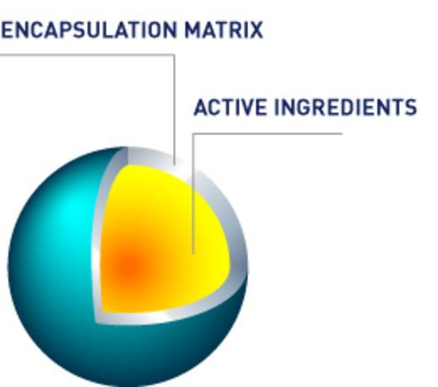 ریزپوشینه ها (میکروکپسول ها) در صنایع غذایی